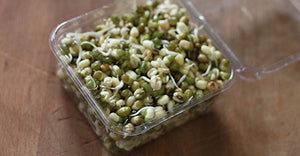 Sprouts, Mung Bean - 150g