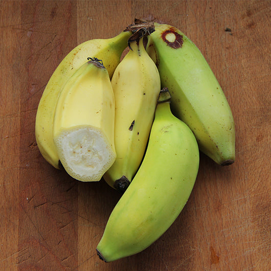 Bananas, Lady Finger