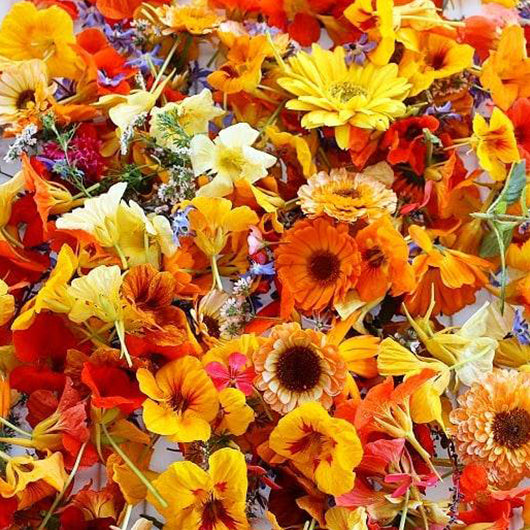 Edible Flowers - Punnet