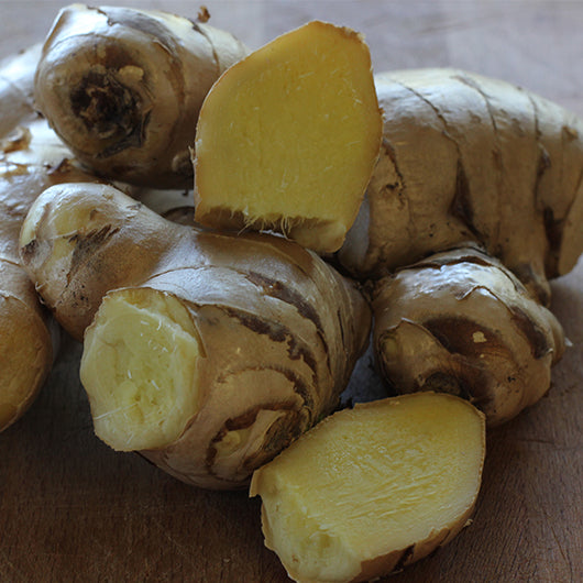 Ginger, Old Season