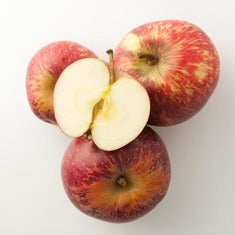 Apples Red, Lunch Box size