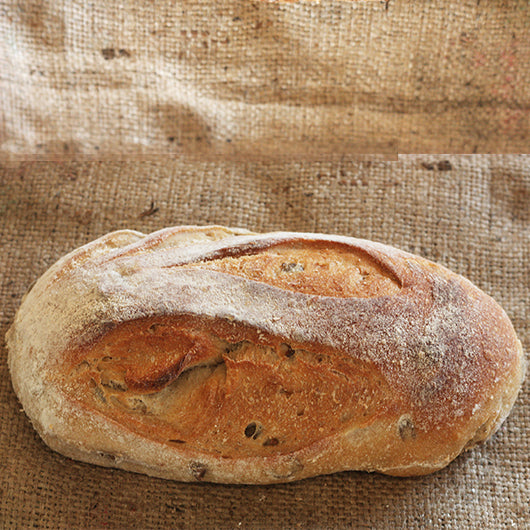 BREAD: Olive and Rosemary Sourdough Batard