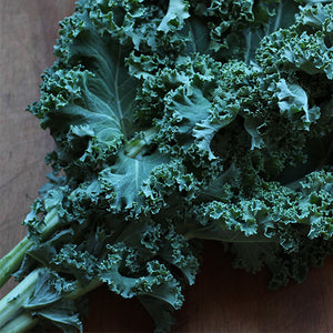 Kale, Curly Green - Bunch