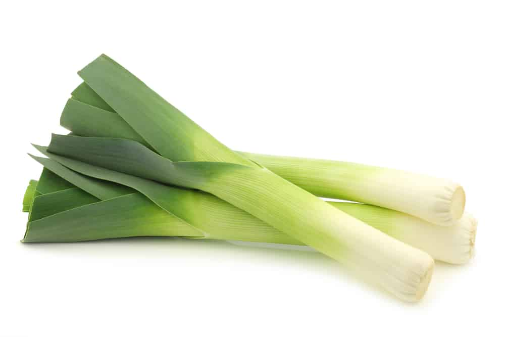 Leek - bunch