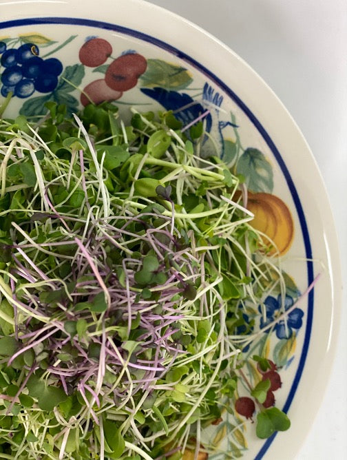 Microgreens - Spicy Mix 100g