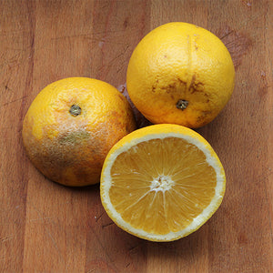 Oranges Juicing - 2kg