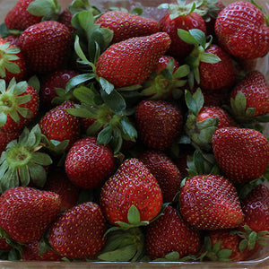 Strawberries Seconds 500g