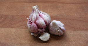 Garlic, Purple - 100g