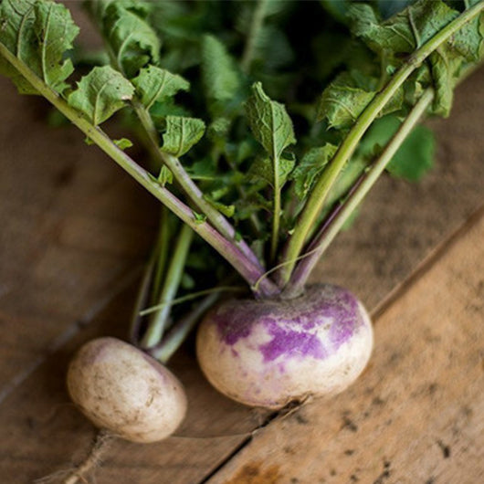 Turnips, bunch