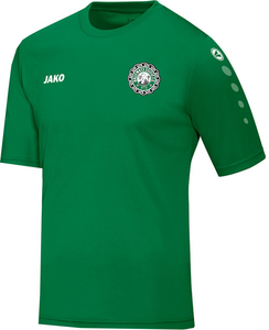 KIDS JAKO BALLYMOTE CELTIC TRAINING JERSEY BC4233K