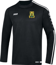 Load image into Gallery viewer, Kids JAKO Carrick Rovers Sweatshirt CR8819K