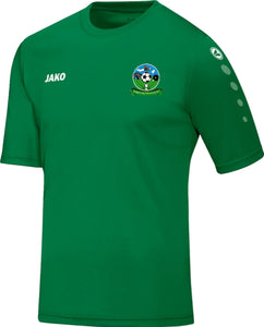 Adult JAKO Colemanstown United Training Jerseys CU4233