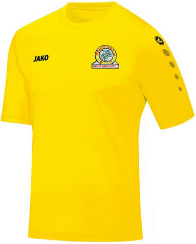 KIDS JAKO SKY VALLEY ROVERS TRAINING JERSEY SVR4233K YELLOW