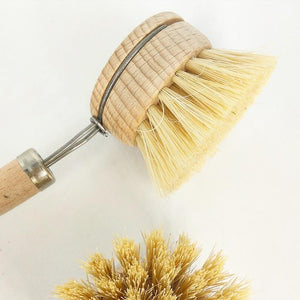 Eco dish brush replaceable bristle head