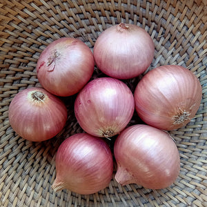 Load image into Gallery viewer, Onion