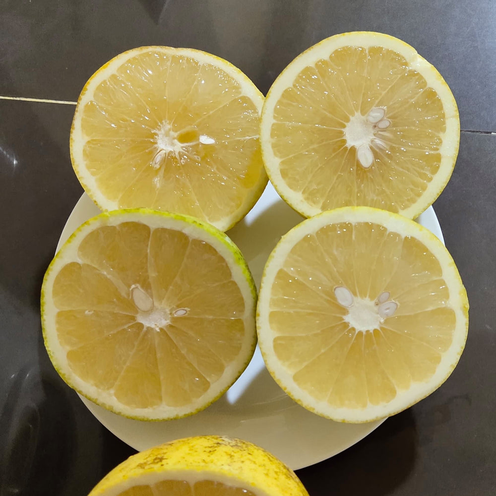 Load image into Gallery viewer, Grapefruit ( 1 pcs )