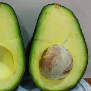 Load image into Gallery viewer, Avocado