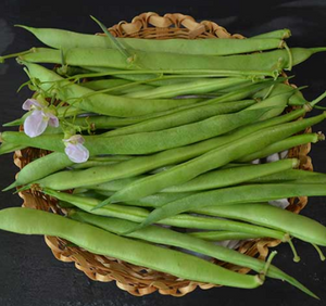 Load image into Gallery viewer, Green Bean