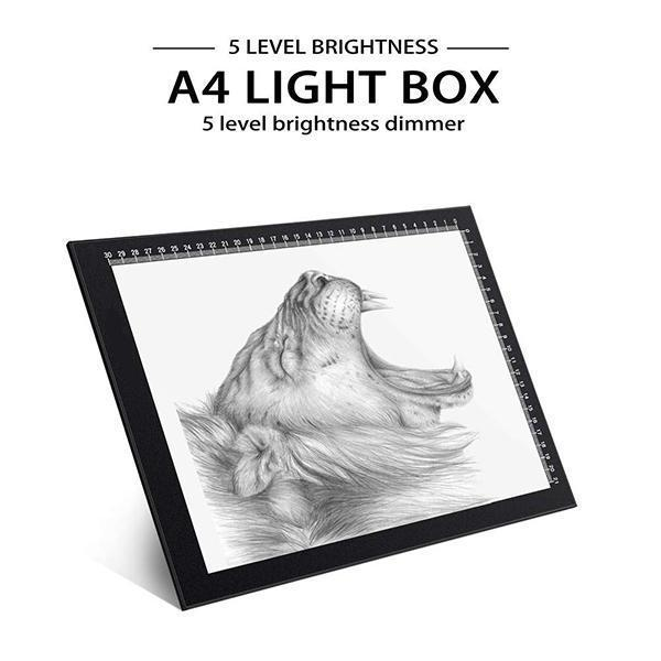 2019 The Best LED Light Boxes