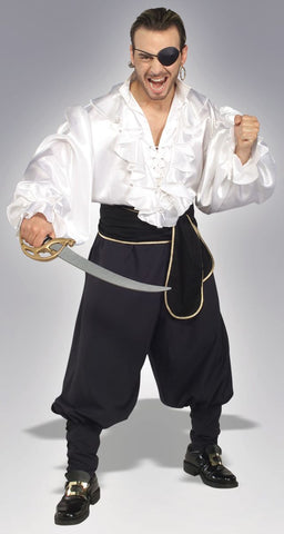Swashbuckler Costume Adult
