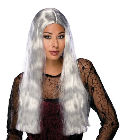 "Witch Wig Grey 24"" Long"