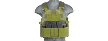 Load image into Gallery viewer, DEVGRU Convertible Plate Carrier