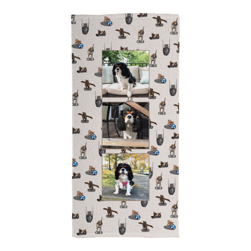Fur, Fun & Whimsy - A Photo Beach Towel Collaboration from We Know Stuff
