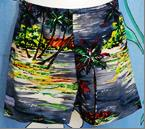 281 - BASIC SHORTS - ISLANDS - Size 0