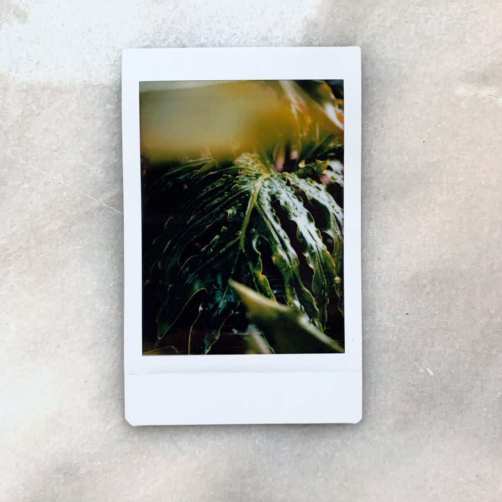 """Florida Rainstorm"" - Instax Mini Print"