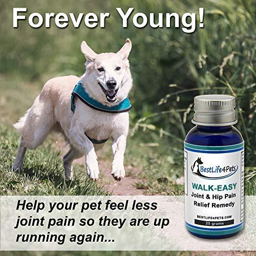 WALK-EASY Hip and Joint Pain Relief Supplement for Dogs and Cats