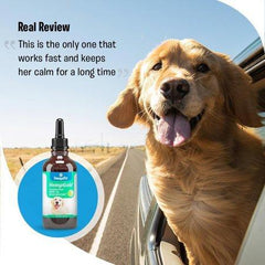 Hemp Oil for Dogs and Cats (250 mg) Organic Dog Hemp Oil for Anxiety Relief, Calming and Joint Health - Easily Apply to Treats - Grown in USA