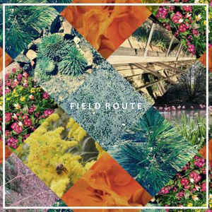 Field Route - Self Titled - 7