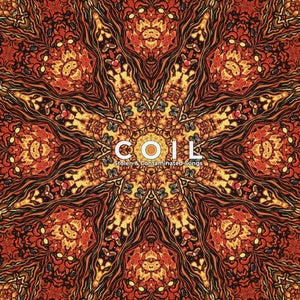 Coil - Stolen & Contaminated Songs - 2xLP