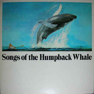 Humpback Whale - Songs Of The Humpback Whale - LP