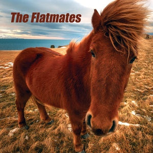 The Flatmates - Self Titled - LP