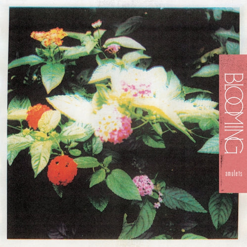Amulets - Blooming - LP
