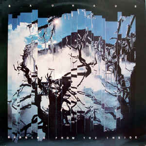 Used - Bauhaus - Burning From The Inside - LP