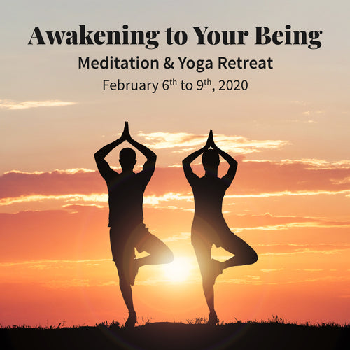 Awakening to Your Being - 4 Day Meditation and Yoga Retreat in Alwar, Rajasthan, India