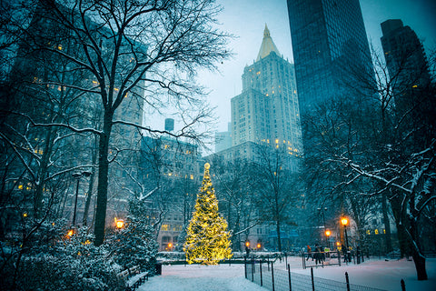 Christmas in the USA | Christmas Songs and Carols Love to Sing