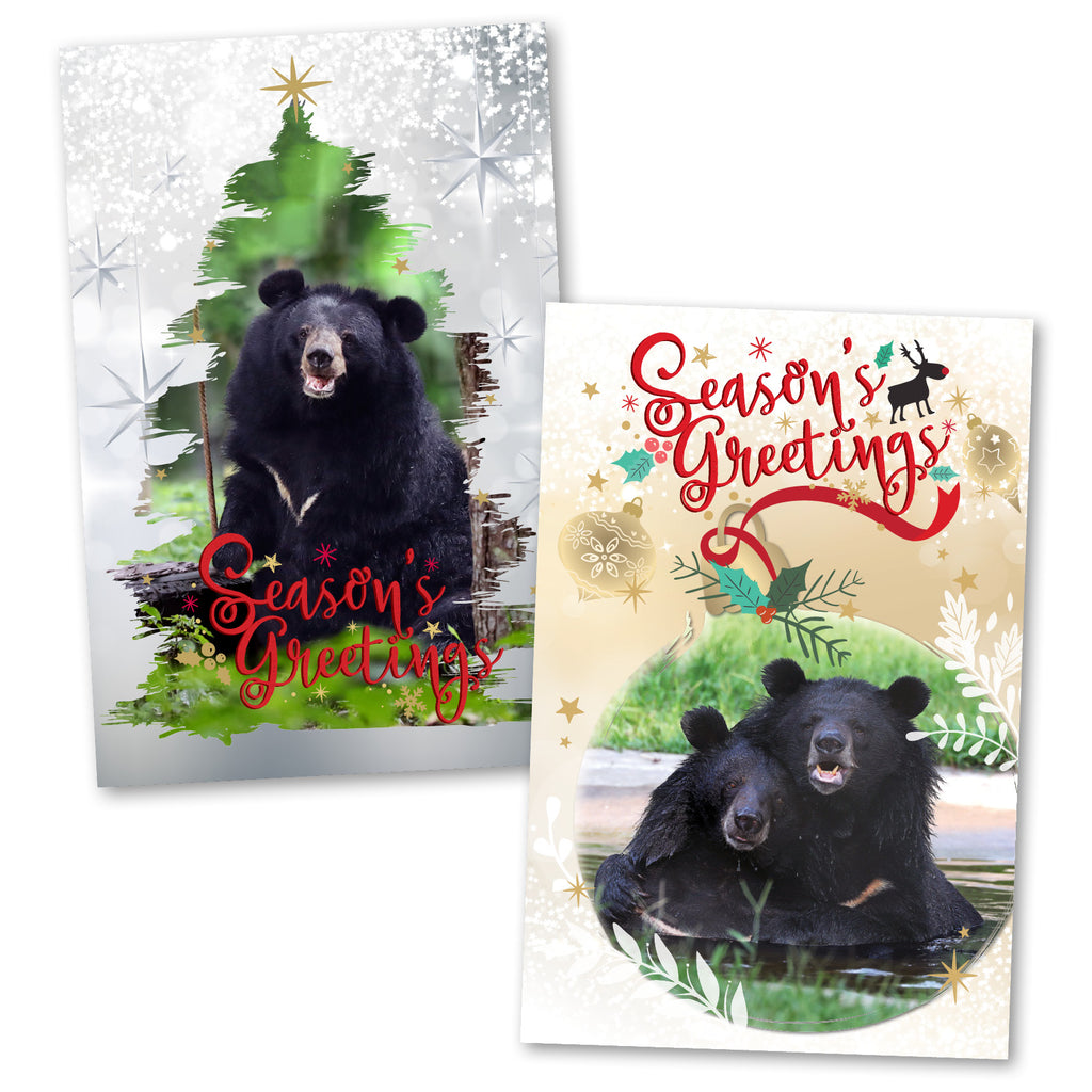Bear Christmas cards (2019)
