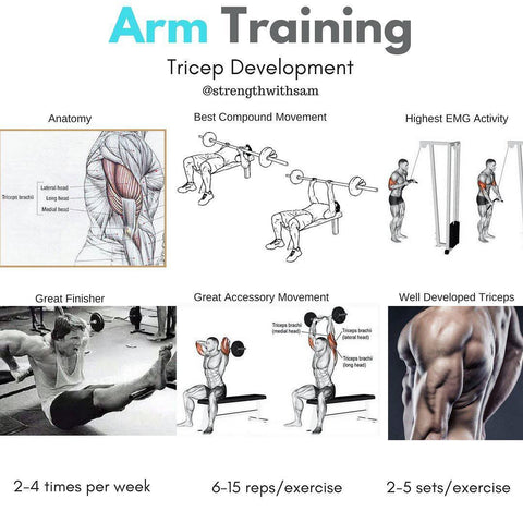 Science Based Tricep Training – Strength With Sam