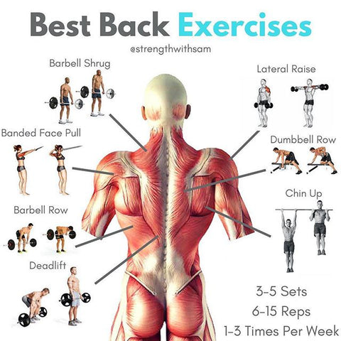 Best Back Exercises To Build Strength And Size Strength With Sam