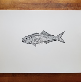 PRINT BLUEFISH