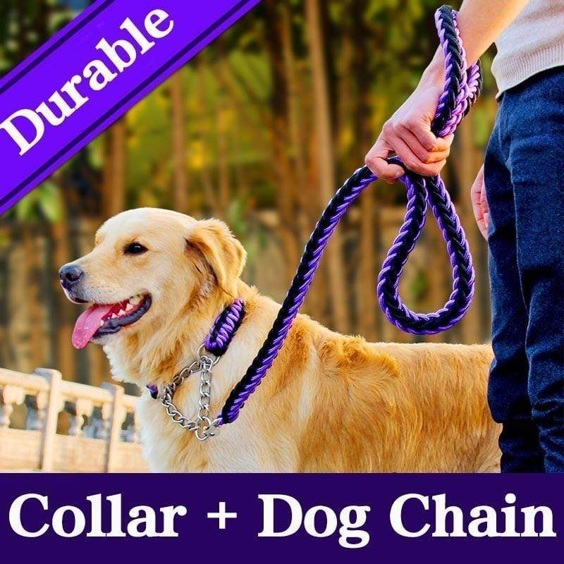 Max and Maci's Store Dog Accessories 15 colors Dog Leash