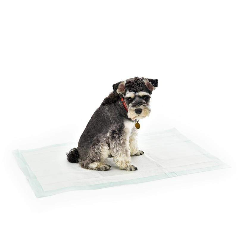 Max and Maci's Store Dog Accessories Dog Cat Cleaning Use Super Absorbent Nappy Paper