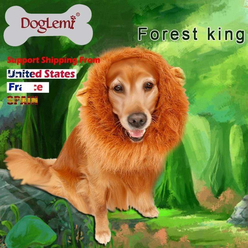 Max and Maci's Store Dog Accessories dog costume cosplay lion wigs hair