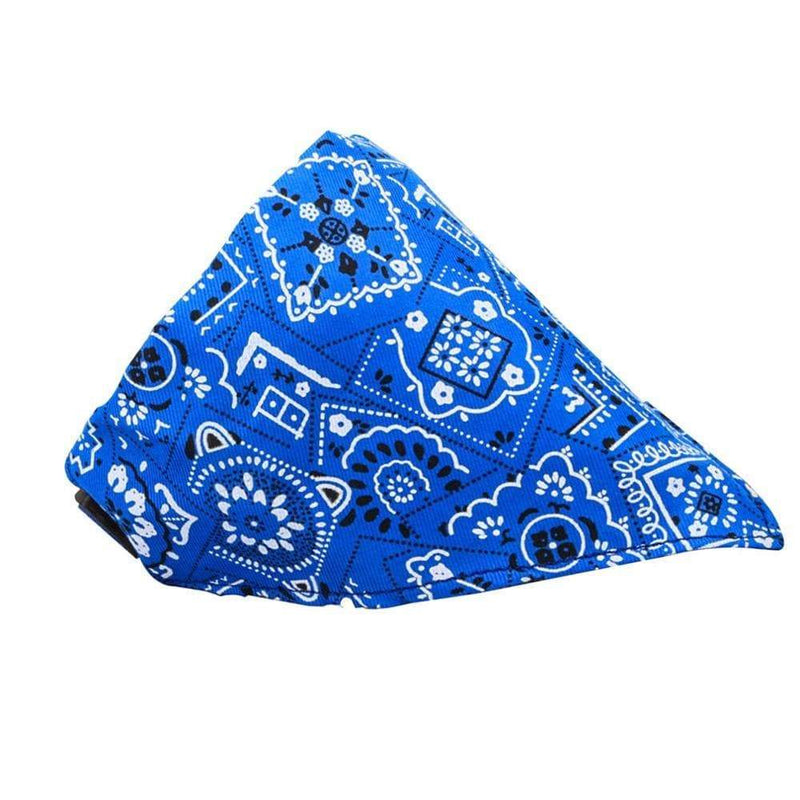 Max and Maci's Store Dog Accessories Exquisite Dog Webbing Collar Saliva Towel Scarf
