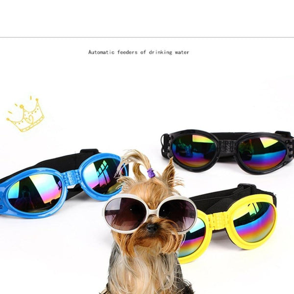 Fashionable Dogs Sunglasses - Max and Maci's Store