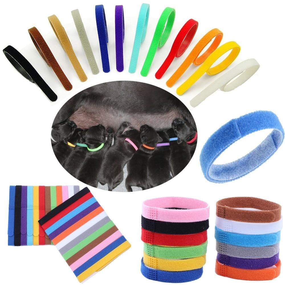 Max and Maci's Store Dog Collar 12 Colors Identification ID Collars