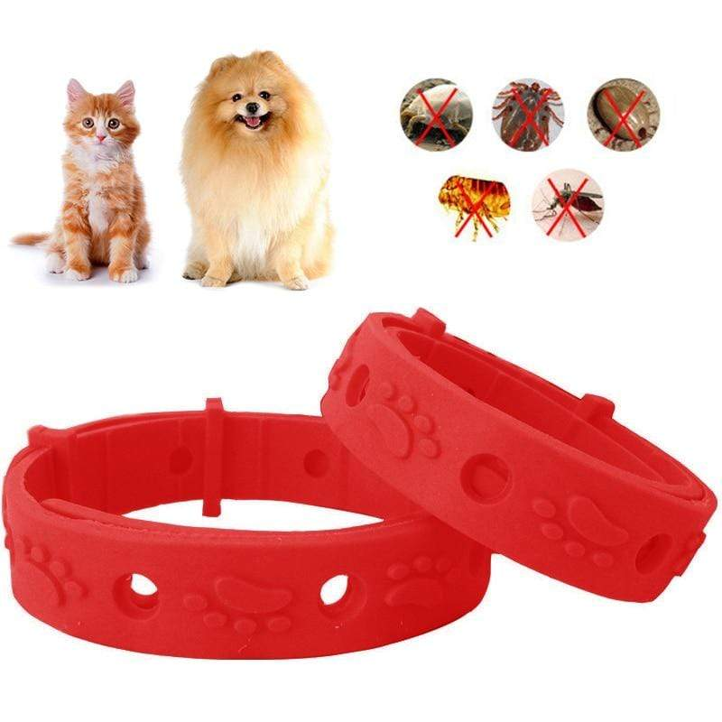 Max and Maci's Store Dog Collar 38cm Pet Dog Collar Anti Flea Ticks Mosquitoes